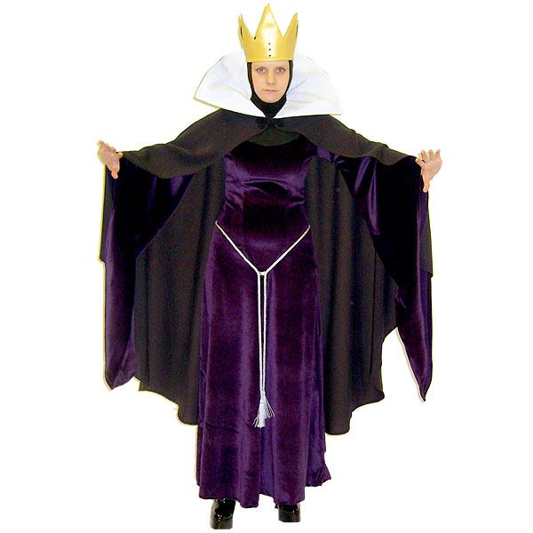 Ladies Evil Queen Sleeping Beauty Costume Size 10 - 12 Image